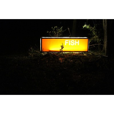 """Fish"" lightbox"