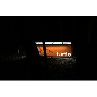 """Turtle"" lightbox"
